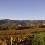 Beaujolais les Crus